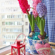 Beauty hyacinths on a window — Foto Stock