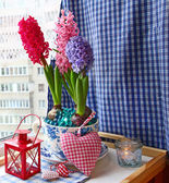 Advents composition with a flashlight and hyacinths — 图库照片
