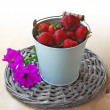 Berries of strawberry in a grey bucket and flowers — Foto Stock