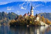 Bled z jeziora, słowenia, europa — Zdjęcie stockowe