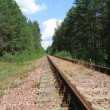 The railway in wood — Stock Photo