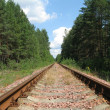 Stock Photo: The railway in wood