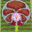 Euro 2012 symbol. Flower Show in Kiev, dedicated to the European football championship — Stock Photo