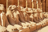 Ancient statues in the Karnak Temple, Luxor — Stock Photo