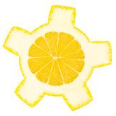 Lemon wheel — Stock Photo