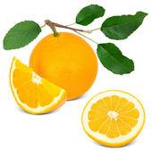 Fruit — Foto de Stock