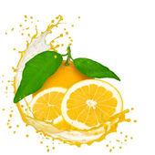 Fruta con splash — Foto de Stock