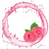 фруктовый всплеск — Стоковое фото