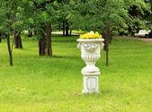 Jarrón con flores — Foto de Stock