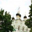 Stock Photo: Domes of orthodox church
