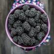 Blackberry — Stock Photo #11949946