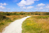 Eierland at island Texel in Netherlands — Stock Photo