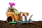 Fleurs et outils de jardin — Photo