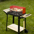 Grilling time! — Stock Photo #10796722