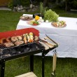 Grilling time! — Stock Photo #10796780