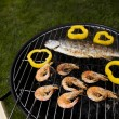 Grilling time! — Stock Photo #10797419
