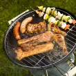 Grilling time! — Stock Photo #10800367