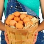 Ферме девочка с корзинкой яиц — Стоковое фото