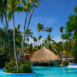 Palm and swimming pool - Foto Stock