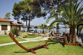 Deniz kenarında güzel egzotik pank — Stok fotoğraf
