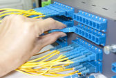 Optic fiber cables connected to an optic switch — Stockfoto