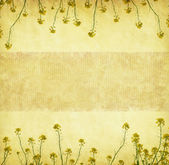 Grungy Background.old paper rapeseed — Stock Photo