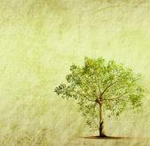 árvore com textura de papel antigo velho grunge — Fotografia Stock