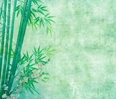 Bamboo on old grunge antique paper texture — ストック写真