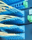 Faser-optische netz-kabel-patch-panel und schalter — Stockfoto