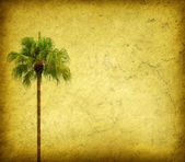 Palm with set of abstract painted background — Stock Photo