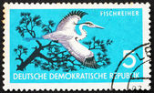 Postage stamp GDR 1959 Grey Heron, Ardea Cinerea, Bird — Stock Photo
