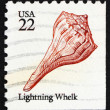 Postage stamp USA 1985 Lightning Whelk, Sea Snail — Stock Photo