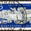Postage stamp GDR 1965 Common Iguana — Stock Photo