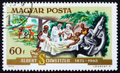Postage stamp Hungary 1975 Dr. Albert Schweitzer and Patient — Stock Photo