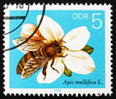 Postage stamp GDR 1990 Apple Blossom, Bees Collecting Nectar — Stock Photo