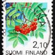 Stock Photo: Postage stamp Finland 1991 EuropeRowFruit