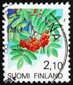 Postage stamp Finland 1991 European Rowan Fruit — Stock Photo