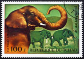 Postage stamp Chad 1972 African Elephants, African Wild Animals — Stock Photo