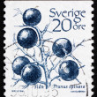 Postage stamp Sweden 1983 Sloe, Blackthorn — 图库照片 #11595841