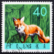Postage stamp Poland 1965 Red Fox — Stock Photo