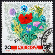 Postage stamp Poland 1967 Flowers of the Meadows — Stock Photo