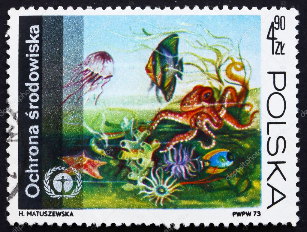 POLAND - CIRCA 1973: a stamp printed in the Poland shows Underwater Fauna and Flora, Protection of the Environment, circa 1973 — Stock Photo #11596057