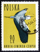 Postage stamp Poland 1964 Grey Heron, Ardea Cinerea, Wading Bird — Stock Photo