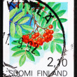 Photo: Postage stamp Finland 1991 EuropeRowFruit
