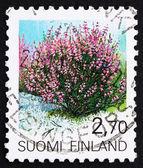 Selo postal finlândia 1990 heather, calluna vulgaris, arbusto — Fotografia Stock