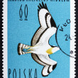 Royalty-Free Stock Photo: Postage stamp Poland 1964 Osprey, Bird of Prey