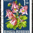 Postage stamp Austria 1966 Columbine, Alpine Flower — Foto Stock