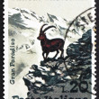 Postage stamp Italy 1967 Alpine Ibex — Stock Photo