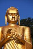 Statue de bouddha sur le sri lanka — Photo