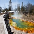Stock Photo: Yellowstone